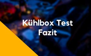 Fazit Kühlbox Test